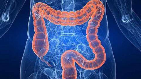Những phương pháp từ tự nhiên giúp đường ruột của bạn luôn khỏe mạnh - Ảnh 9.