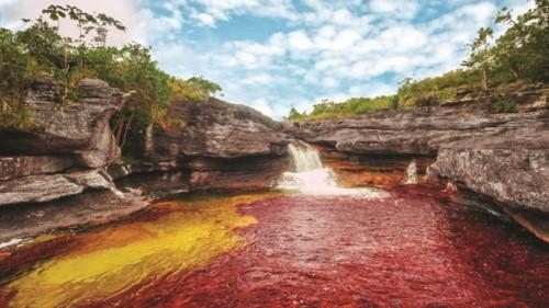 """Độc đáo """"dòng sông 5 màu"""" ở Colombia - Ảnh 2."""
