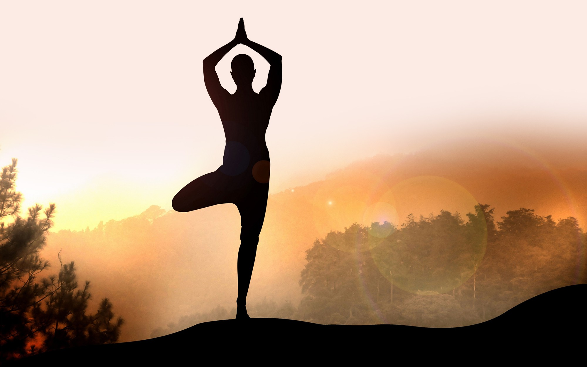 Cao thủ Yoga tiết lộ về Yoga thật - Yoga giả và bí quyết ăn-tập-ngủ tuyệt vời cho sức khỏe - Ảnh 30.