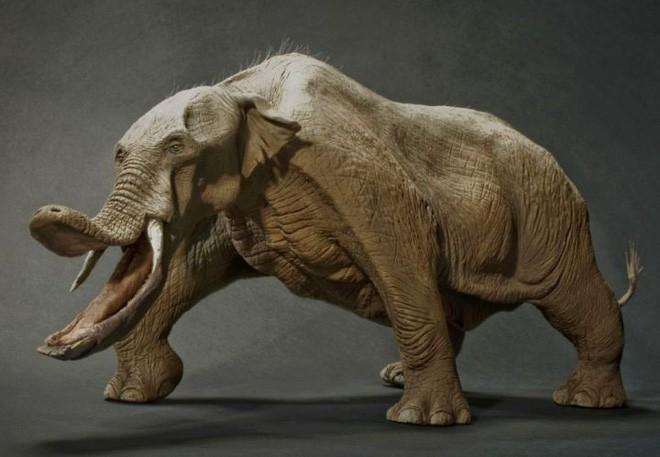 Có thể bạn chưa biết, tổ tiên của voi và tê giác cổ đại có vẻ ngoài quái dị hơn ngày nay nhiều! - Ảnh 4.