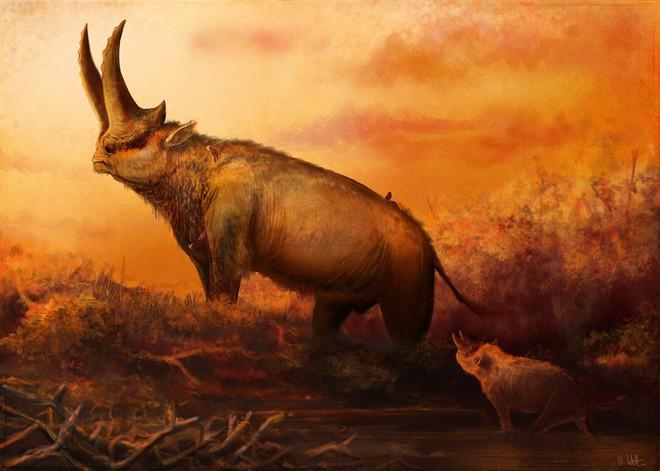 Có thể bạn chưa biết, tổ tiên của voi và tê giác cổ đại có vẻ ngoài quái dị hơn ngày nay nhiều! - Ảnh 8.