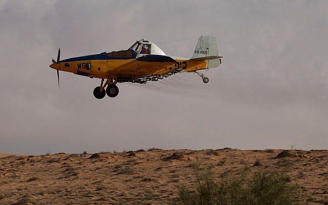 Chiến đấu cơ Israel tấn công căn cứ hải quân Hamas, tên lửa bắn nhầm máy bay dân sự ở biên giới Syria - Ảnh 5.