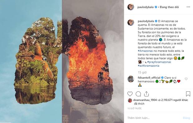 Các siêu sao bóng đá cầu nguyện cho rừng Amazon, Ronaldo tuyên bố: Chúng ta phải có trách nhiệm cứu lấy hành tinh này - Ảnh 1.