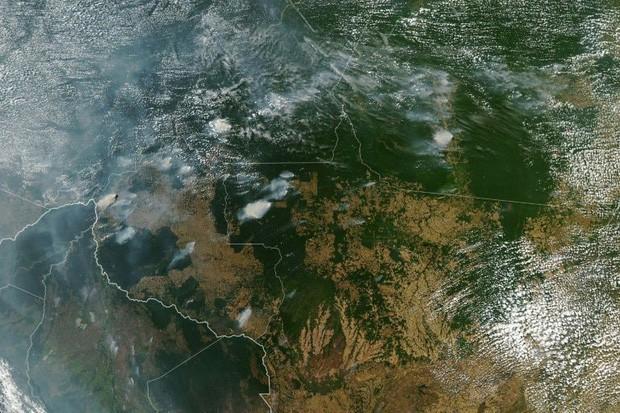 Tình hình cháy rừng tại Amazon đang trầm trọng đến mức nào: 8 tháng 100.000 vụ cháy, thảm họa ở tầm cỡ địa cầu - Ảnh 1.