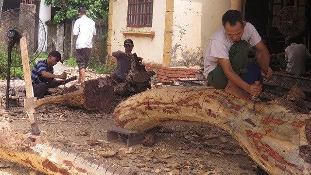 Số phận lô gỗ sưa trăm tỉ ở Hà Nội sẽ được định đoạt ra sao? - Ảnh 1.
