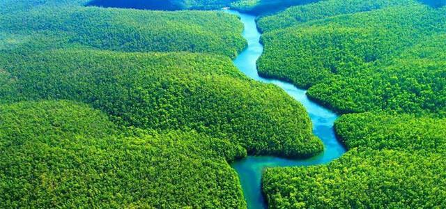 Loạt ảnh gây sốc về rừng Amazon bùng cháy với tốc độ kỷ lục: Khói có thể nhìn thấy từ ngoài không gian, các thành phố bị bao phủ mù mịt như tận thế - Ảnh 20.