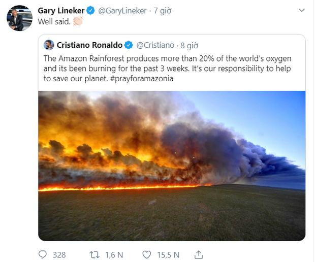 Các siêu sao bóng đá cầu nguyện cho rừng Amazon, Ronaldo tuyên bố: Chúng ta phải có trách nhiệm cứu lấy hành tinh này - Ảnh 3.