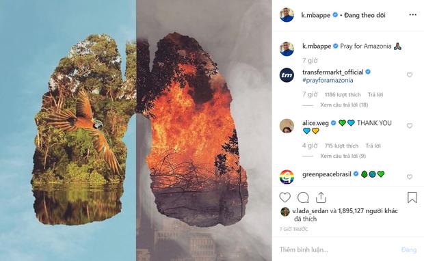 Các siêu sao bóng đá cầu nguyện cho rừng Amazon, Ronaldo tuyên bố: Chúng ta phải có trách nhiệm cứu lấy hành tinh này - Ảnh 4.
