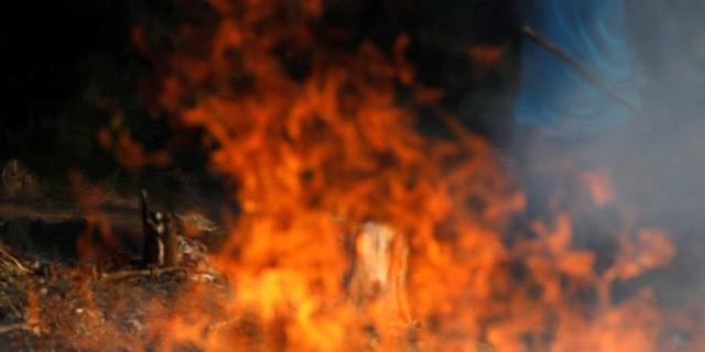Loạt ảnh gây sốc về rừng Amazon bùng cháy với tốc độ kỷ lục: Khói có thể nhìn thấy từ ngoài không gian, các thành phố bị bao phủ mù mịt như tận thế - Ảnh 4.