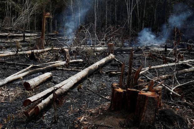 Loạt ảnh gây sốc về rừng Amazon bùng cháy với tốc độ kỷ lục: Khói có thể nhìn thấy từ ngoài không gian, các thành phố bị bao phủ mù mịt như tận thế - Ảnh 5.