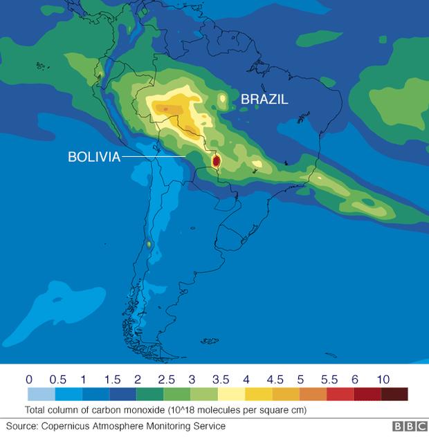 Tình hình cháy rừng tại Amazon đang trầm trọng đến mức nào: 8 tháng 100.000 vụ cháy, thảm họa ở tầm cỡ địa cầu - Ảnh 5.