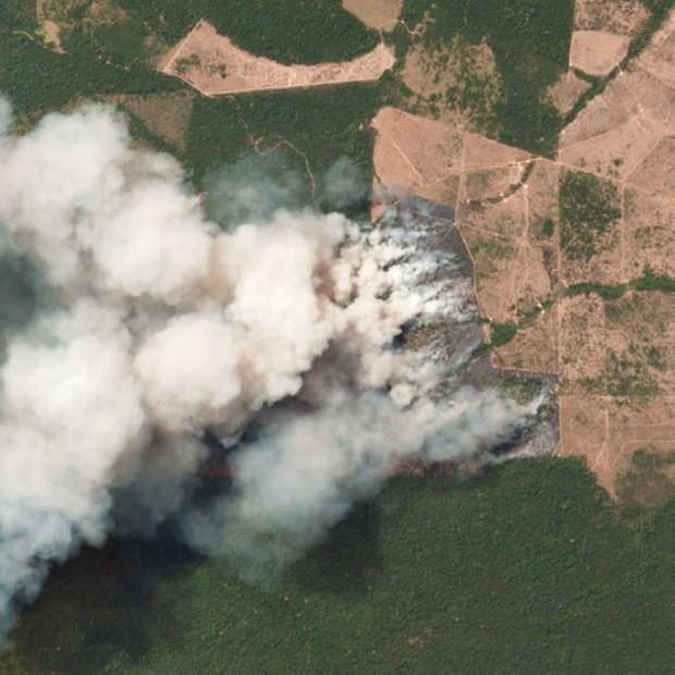 Tình hình cháy rừng tại Amazon đang trầm trọng đến mức nào: 8 tháng 100.000 vụ cháy, thảm họa ở tầm cỡ địa cầu - Ảnh 7.