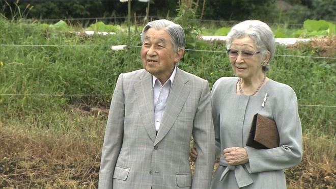 Ngôn tình ngoài đời thực: Vợ chồng cựu Nhật hoàng nắm tay nhau hưởng thú vui tuổi già, 60 năm tình yêu vẫn vẹn nguyên - Ảnh 5.