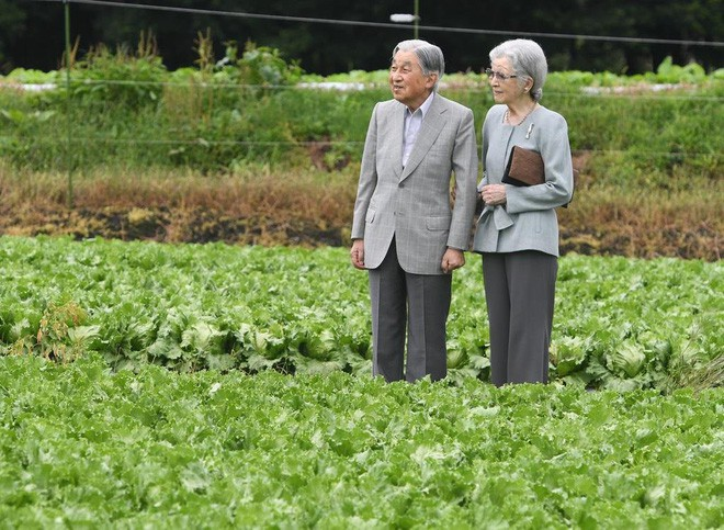 Ngôn tình ngoài đời thực: Vợ chồng cựu Nhật hoàng nắm tay nhau hưởng thú vui tuổi già, 60 năm tình yêu vẫn vẹn nguyên - Ảnh 6.
