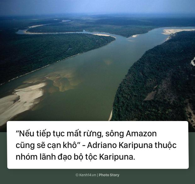 Toàn cảnh thảm hoạ cháy rừng Amazon khiến cả thế giới bàng hoàng - Ảnh 8.