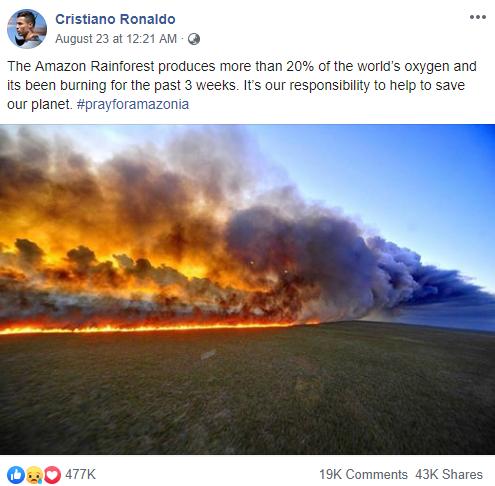 Hàng loạt sao cầu nguyện cho rừng Amazon, nhưng lại share nhầm ảnh đám cháy ở chỗ khác, kể cả Ronaldo, Djokovic hay Madonna - Ảnh 1.