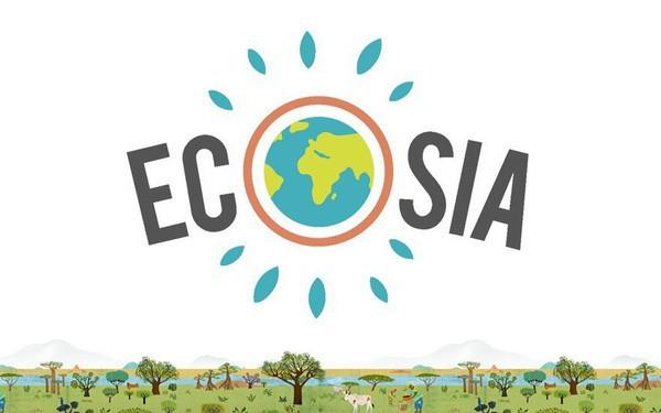 Muốn cứu Trái đất hãy bỏ Google: Công cụ tìm kiếm này dành 80% lợi nhuận để trồng rừng, cứ 45 lượt sử dụng lại thêm một cây xanh mới được tạo ra - Ảnh 1.
