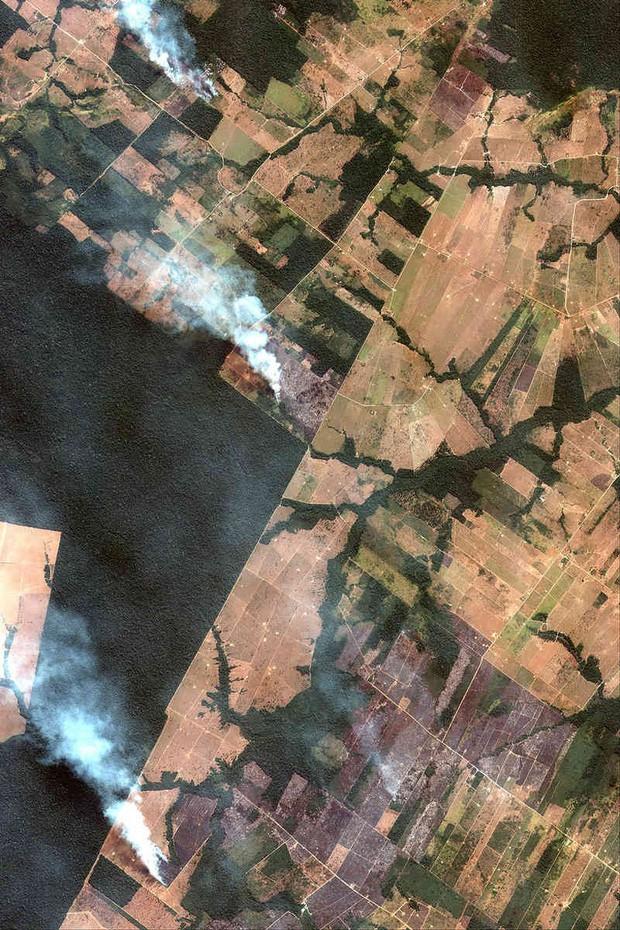The New York Times: Phân tích ảnh vệ tinh đã chỉ ra chính xác thủ phạm gây thảm họa cháy rừng tại Amazon - Ảnh 2.