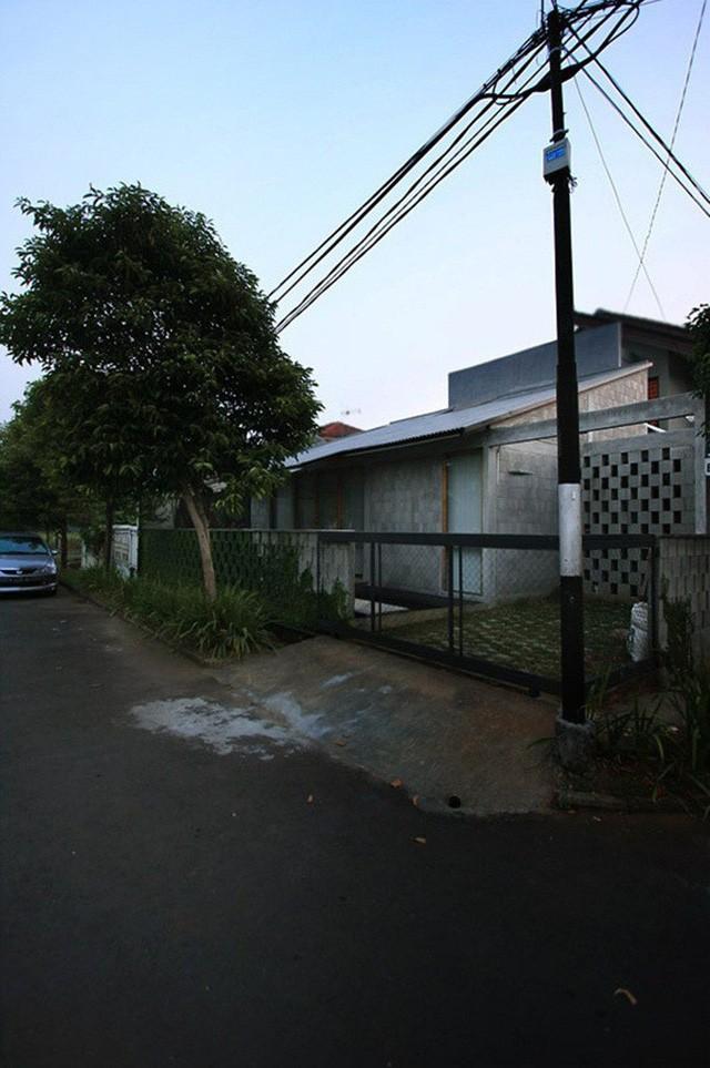 Nhà cấp 4 có nét đẹp thanh xuân từ cây cỏ phủ xanh bê tông thô cứng với chi phí 345 triệu - Ảnh 3.