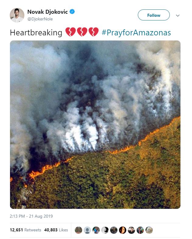 Hàng loạt sao cầu nguyện cho rừng Amazon, nhưng lại share nhầm ảnh đám cháy ở chỗ khác, kể cả Ronaldo, Djokovic hay Madonna - Ảnh 4.