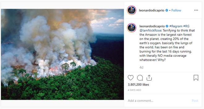 Hàng loạt sao cầu nguyện cho rừng Amazon, nhưng lại share nhầm ảnh đám cháy ở chỗ khác, kể cả Ronaldo, Djokovic hay Madonna - Ảnh 6.