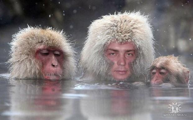 Hết Ấn Độ, đến lượt các kỳ nhân nước Nga tham gia vào đại chiến thiên hạ đệ nhất cao thủ Photoshop - Ảnh 6.