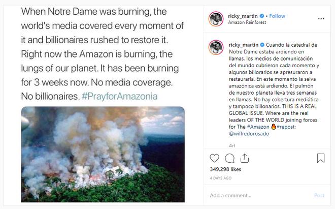Hàng loạt sao cầu nguyện cho rừng Amazon, nhưng lại share nhầm ảnh đám cháy ở chỗ khác, kể cả Ronaldo, Djokovic hay Madonna - Ảnh 7.