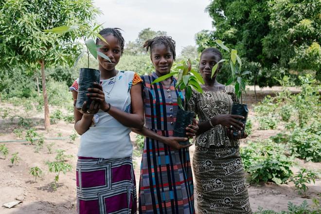 Muốn cứu Trái đất hãy bỏ Google: Công cụ tìm kiếm này dành 80% lợi nhuận để trồng rừng, cứ 45 lượt sử dụng lại thêm một cây xanh mới được tạo ra - Ảnh 9.