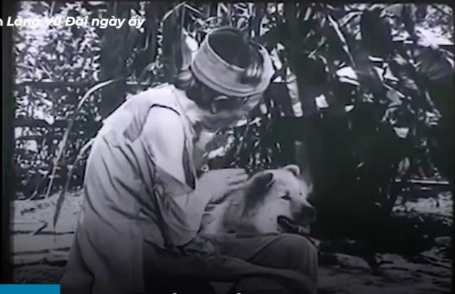 Vì sao chú chó Shiba được lựa chọn vào nhân vật ám ảnh nhiều thế hệ học sinh Việt Nam? - Ảnh 1.