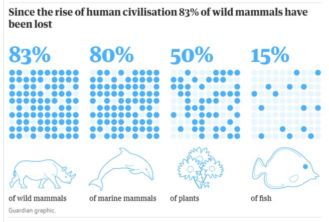 Con người chỉ chiếm 0,01% sự sống trên trái đất nhưng lại hủy diệt 83% các loài khác - Ảnh 1.
