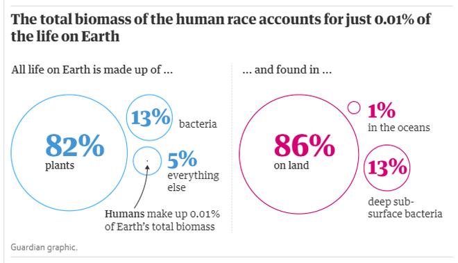 Con người chỉ chiếm 0,01% sự sống trên trái đất nhưng lại hủy diệt 83% các loài khác - Ảnh 3.