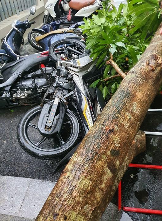 Mưa giông dữ dội từ cuối chiều ở Hà Nội, 1 nam thanh niên bị cây si đổ trúng tử vong - Ảnh 18.