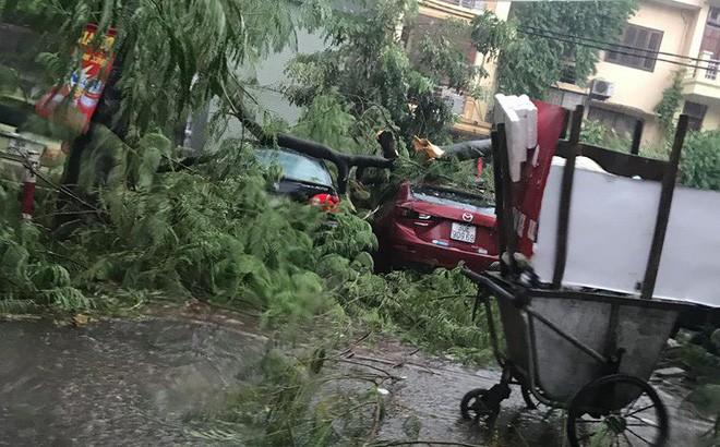 Mưa giông dữ dội từ cuối chiều ở Hà Nội, 1 nam thanh niên bị cây si đổ trúng tử vong - Ảnh 22.