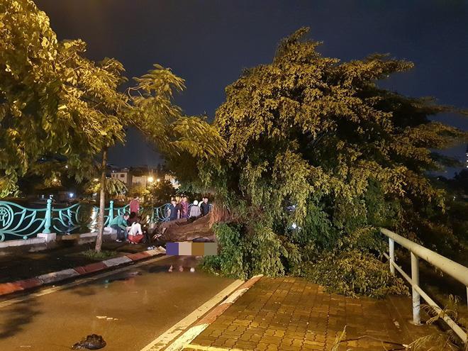 Mưa giông dữ dội từ cuối chiều ở Hà Nội, 1 nam thanh niên bị cây si đổ trúng tử vong - Ảnh 3.