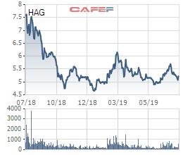 Cổ phiếu HAG thủng đáy 1 năm sau thông tin kết quả kinh doanh - Ảnh 1.