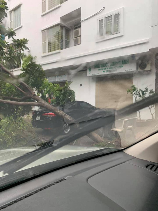 Cây đổ hàng loạt, đè trúng ô tô, hiện trường tan hoang ở Hà Nội và các tỉnh phía Bắc khi bão số 3 quét qua - Ảnh 5.