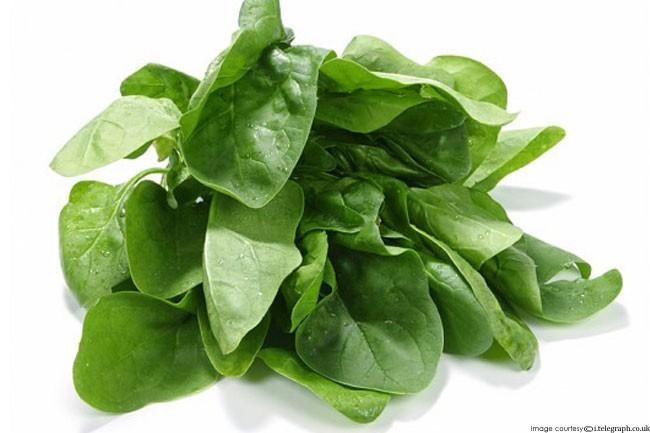 Những thực phẩm hàng đầu giúp nam giới phát triển cơ bắp - Ảnh 5.