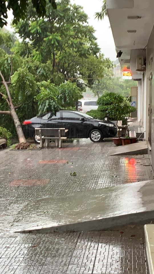 Cây đổ hàng loạt, đè trúng ô tô, hiện trường tan hoang ở Hà Nội và các tỉnh phía Bắc khi bão số 3 quét qua - Ảnh 6.
