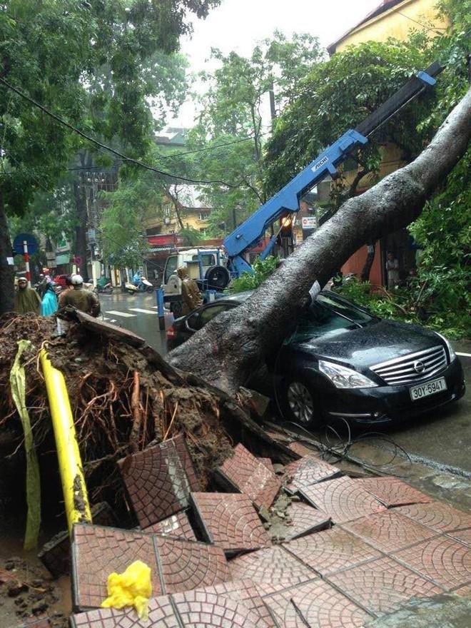Cây đổ hàng loạt, đè trúng ô tô, hiện trường tan hoang ở Hà Nội và các tỉnh phía Bắc khi bão số 3 quét qua - Ảnh 8.