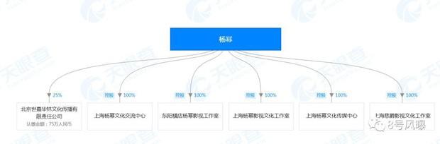 Phân chia tài sản sau ly hôn, netizen mới ngã ngửa hóa ra Dương Mịch sở hữu khối tài sản siêu to khổng lồ đến mức chục nghìn tỷ - Ảnh 9.
