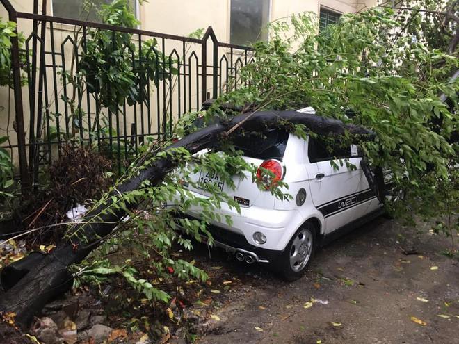 Cây đổ hàng loạt, đè trúng ô tô, hiện trường tan hoang ở Hà Nội và các tỉnh phía Bắc khi bão số 3 quét qua - Ảnh 9.