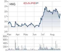 Bị kiểm toán ngoại trừ ý kiến có thể lỗ thêm 192 tỷ đồng, HAGL Agrico nói gì? - Ảnh 2.