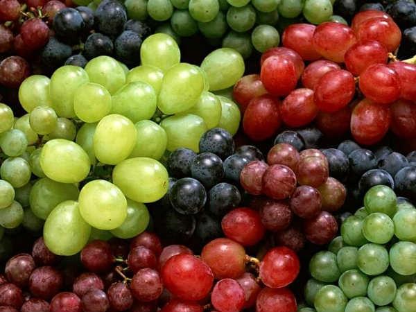 Thực phẩm có tác dụng giảm đau - Ảnh 5.