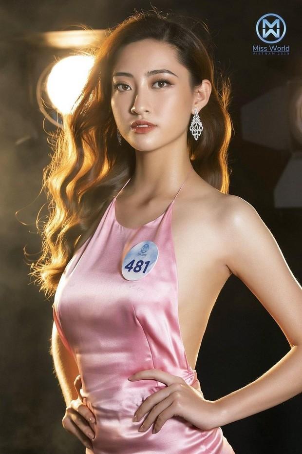 Cư dân mạng kinh ngạc trước sự giống nhau của tân Hoa hậu Thế giới Việt Nam và Đỗ Mỹ Linh - Ảnh 10.