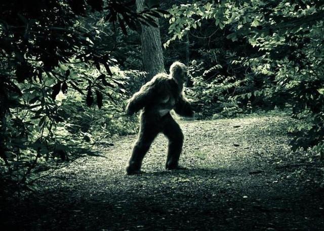 Những quái vật khổng lồ đáng sợ nhất Trái Đất mà con người luôn tin là có thật - Ảnh 1.