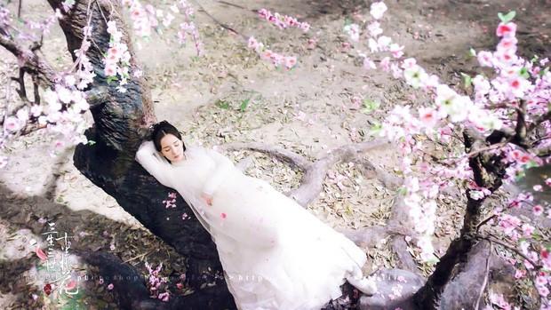 """5 mỹ nhân """"đệ nhất thiên hạ"""" trên màn ảnh Hoa ngữ: Thượng thần Dương Mịch bít cửa trước cô cô Lý Nhược Đồng - Ảnh 15."""