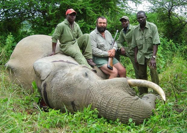 Nên hợp pháp săn thú hoang dã - nghiên cứu từ 130 chuyên gia quốc tế gây tranh cãi cực mạnh, tưởng vô lý nhưng lại cực kỳ đáng suy ngẫm - Ảnh 2.