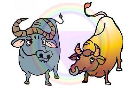Xem tử vi chủ nhật ngày 15/9/2019 của 12 con giáp: Tuổi Mùi mọi việc thuận lợi, Hợi nên dè dặt trong tình cảm - Ảnh 1.