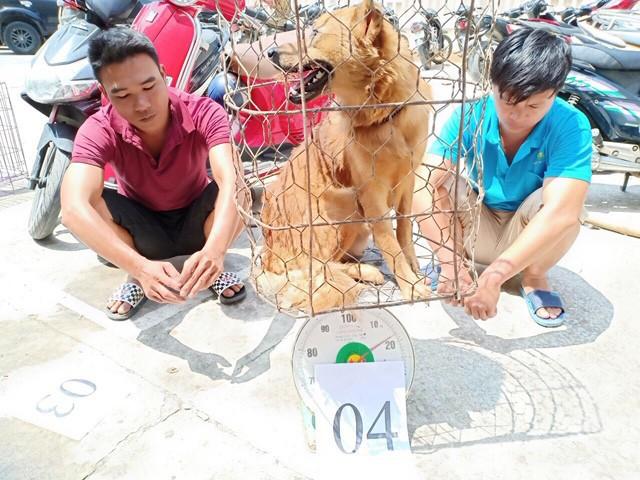 Chi tiết phương thức hoạt động của băng nhóm trộm chó quy mô lớn ở Thanh Hóa - Ảnh 1.