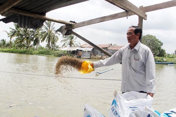 Chuyện Tám Đậu còng lưng nuôi 2.000 tấn cá/năm, ôm tiền tỷ lo chuyện thiên hạ - Ảnh 2.